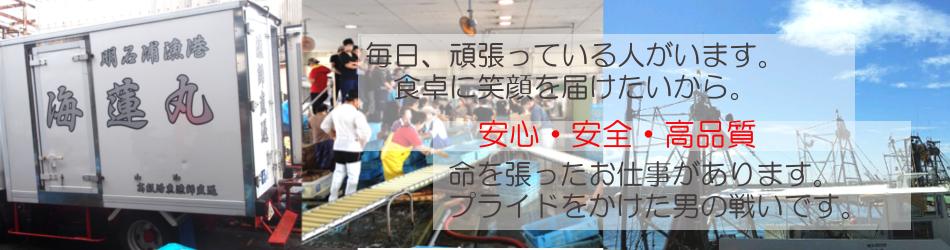 明石昼網・漁師直送 「海蓮丸」